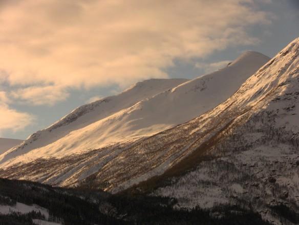 Tortnegrøegga sett ifrå Befring i Stardalen