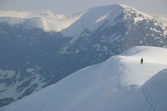 Utsikten ifrå Høgenipa