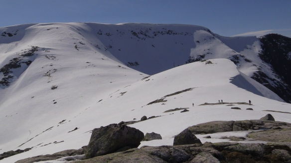 Bilde av oppstigninga til Sygnesandsnipa